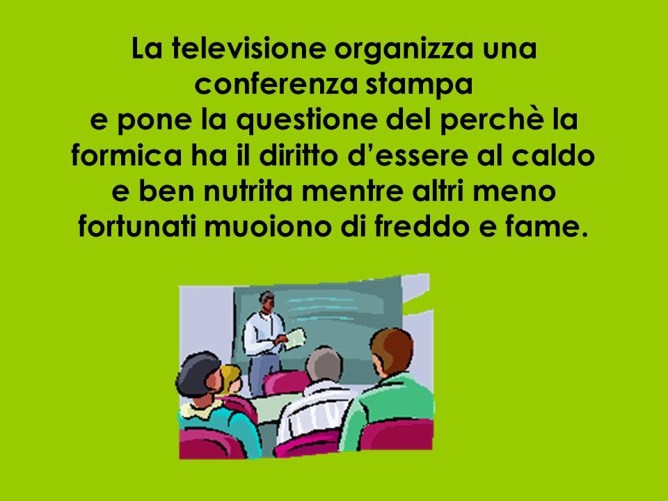 La televisione organizza una conferenza stampa e pone la questione del perchè la formica ha il diritto dessere al caldo e ben nutrita mentre altri meno fortunati muoiono di freddo e fame.