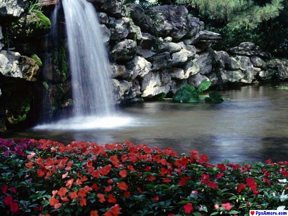 Di fronte a qualsiasi problema che sembri senza soluzione, assumiamo un atteggiamento intelligente, a suo favore: Respiriamo...
