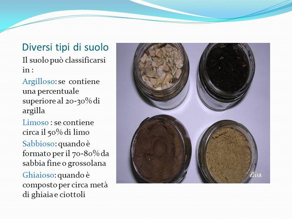 Diversi tipi di suolo Il suolo può classificarsi in : Argilloso: se contiene una percentuale superiore al 20-30% di argilla Limoso : se contiene circa