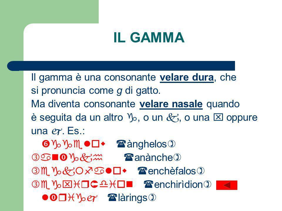 IL GAMMA Il gamma è una consonante velare dura, che si pronuncia come g di gatto.