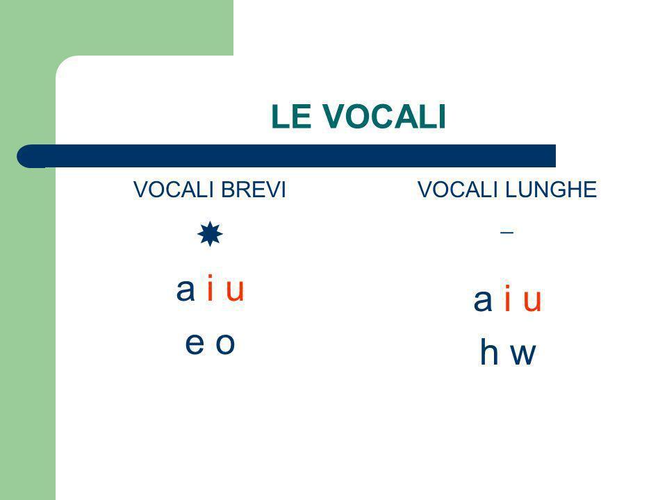 bgdzyklmnpstfxrqc Consonanti doppie Consonanti occlusive (o mute) aspirate Consonanti occlusive (o mute) sorde Consonanti occlusive (o mute) sonore Consonanti non occlusive liquide Consonanti non occlusive nasali Consonanti non occlusive sibilanti dentali labiali gutturali
