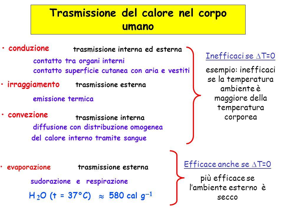 conduzione contatto tra organi interni contatto superficie cutanea con aria e vestiti trasmissione interna ed esterna irraggiamento emissione termica
