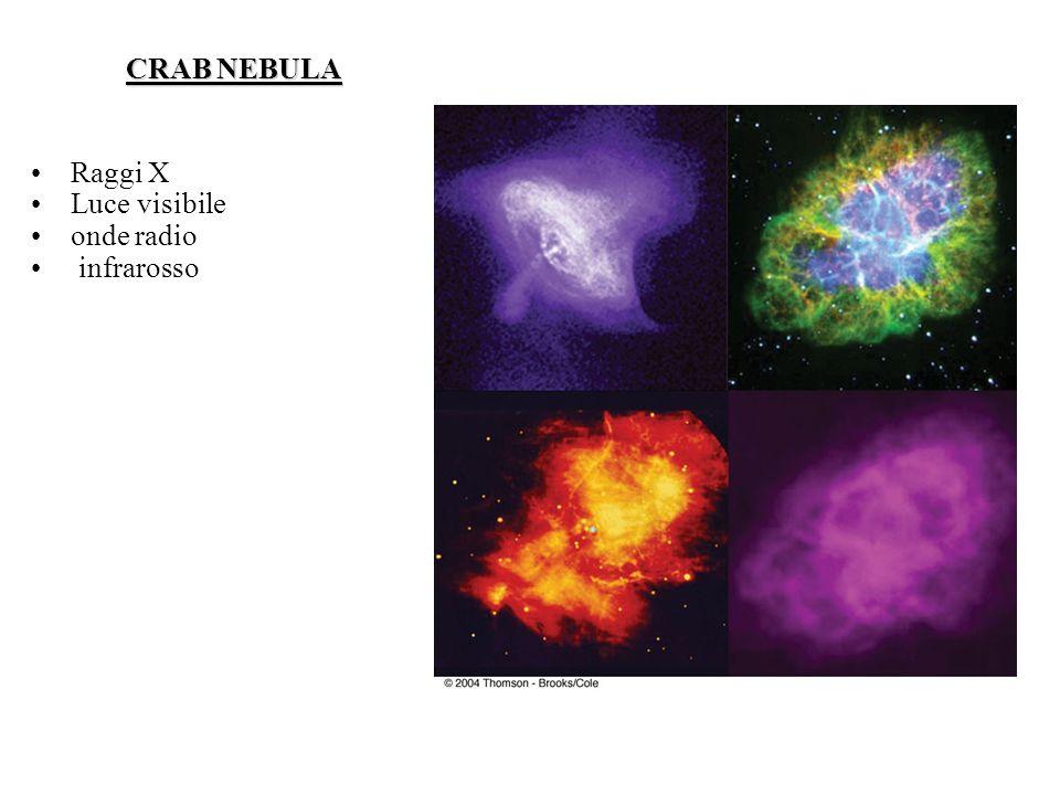 Raggi X Luce visibile onde radio infrarosso CRAB NEBULA