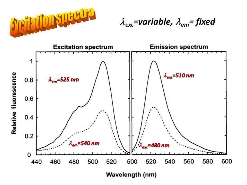 exc =variable, em = fixed exc =510 nm exc =510 nm exc =480 nm exc =480 nm em =525 nm em =525 nm em =540 nm em =540 nm
