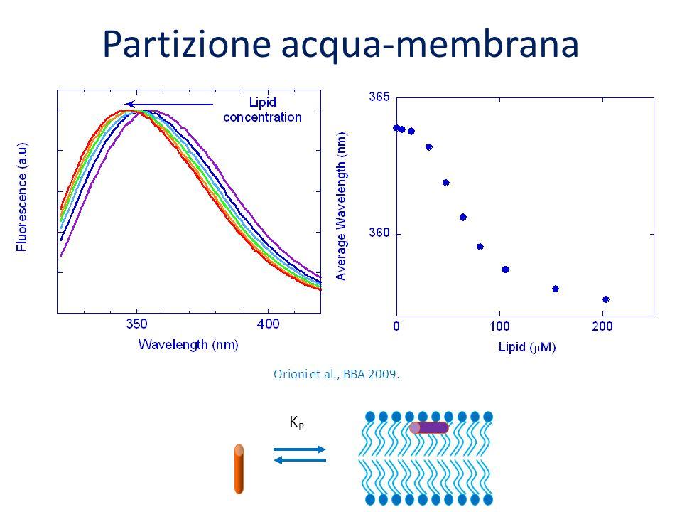 Partizione acqua-membrana Orioni et al., BBA 2009. KPKP