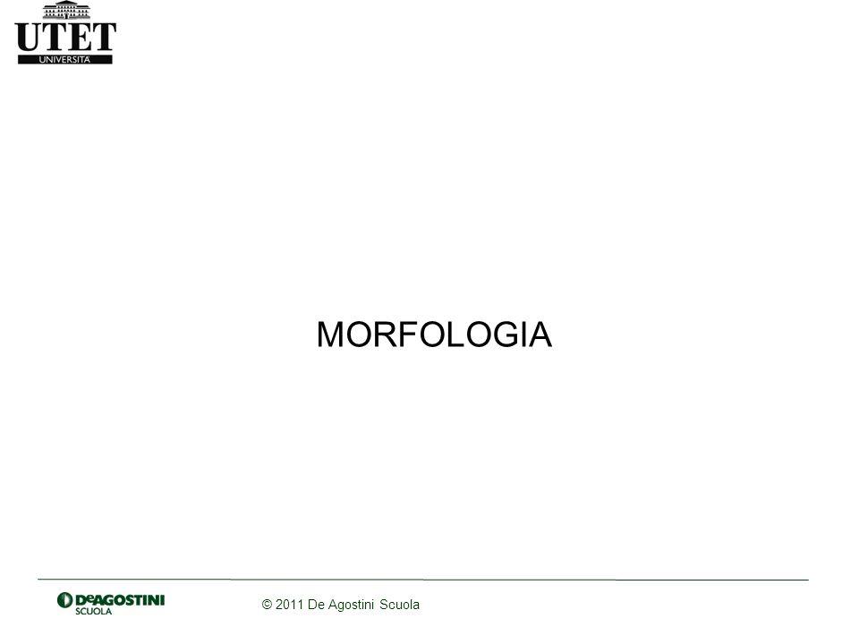 © 2011 De Agostini Scuola I morfemi derivazionali Mutano il significato della base a cui si applicano modificando la classe di appartenenza della parola e la sua funzione semantica, o sfumandone il senso (es.