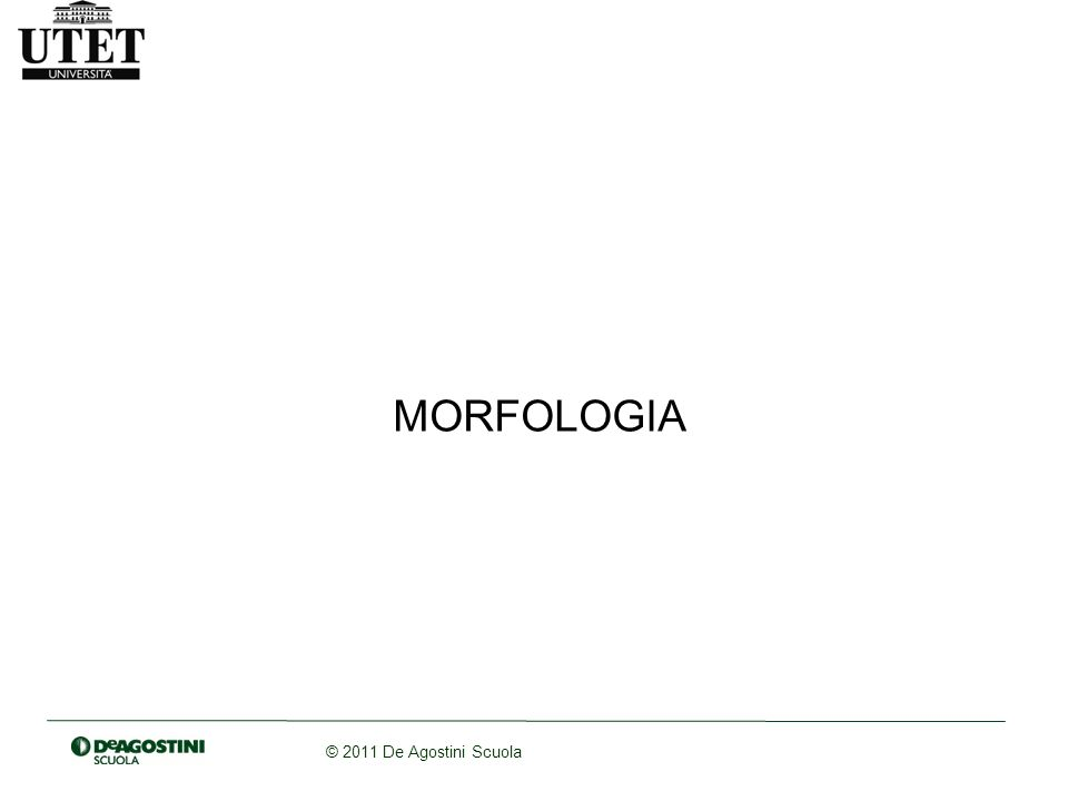 © 2011 De Agostini Scuola MORFOLOGIA