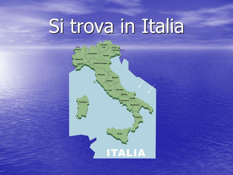 Posizione della Puglia La regione e situata nel meridione italiano; confina a nord e a est con il mar Adriatico, a sud con il mar Ionio, a sud-ovest con la Campania e la Basilicata.