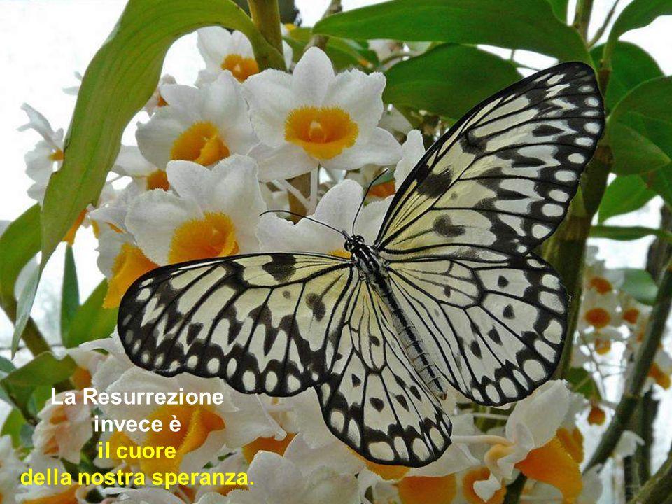 Anche tra i credenti si sono insinuati dubbi sulla verità della Resurrezione...