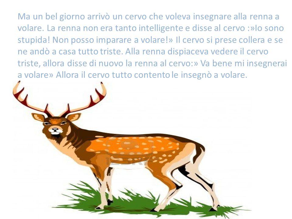 Ma un bel giorno arrivò un cervo che voleva insegnare alla renna a volare. La renna non era tanto intelligente e disse al cervo :»Io sono stupida! Non