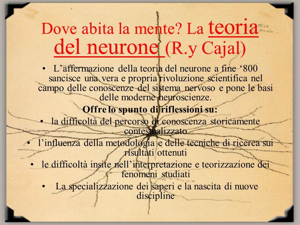 Dove abita la mente? La teoria del neurone (R.y Cajal) Laffermazione della teoria del neurone a fine 800 sancisce una vera e propria rivoluzione scien