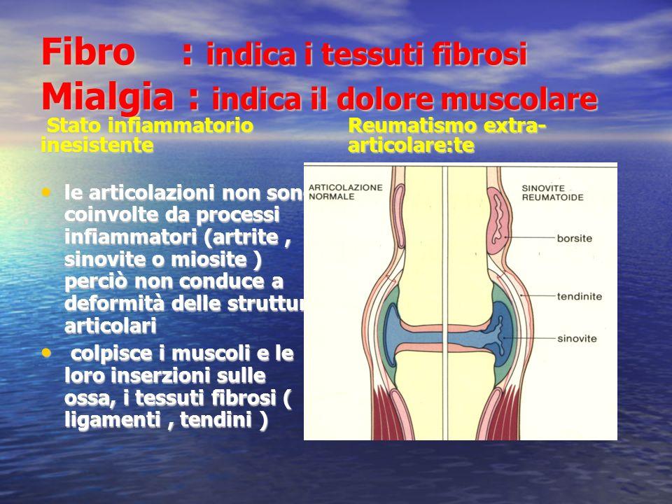 Fibro : indica i tessuti fibrosi Mialgia : indica il dolore muscolare Stato infiammatorio inesistente Stato infiammatorio inesistente le articolazioni non sono coinvolte da processi infiammatori (artrite, sinovite o miosite ) perciò non conduce a deformità delle strutture articolari le articolazioni non sono coinvolte da processi infiammatori (artrite, sinovite o miosite ) perciò non conduce a deformità delle strutture articolari colpisce i muscoli e le loro inserzioni sulle ossa, i tessuti fibrosi ( ligamenti, tendini ) colpisce i muscoli e le loro inserzioni sulle ossa, i tessuti fibrosi ( ligamenti, tendini ) Reumatismo extra- articolare:te