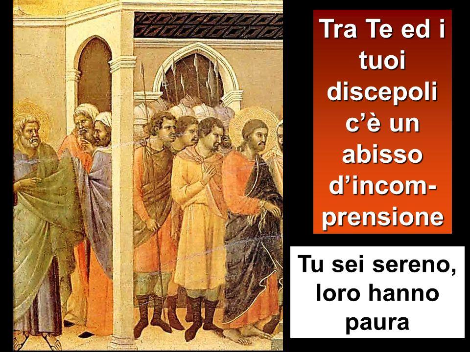 Thanno condotto prigionero in casa del sacerdote Tu, lunico SACERDOTE per sempre
