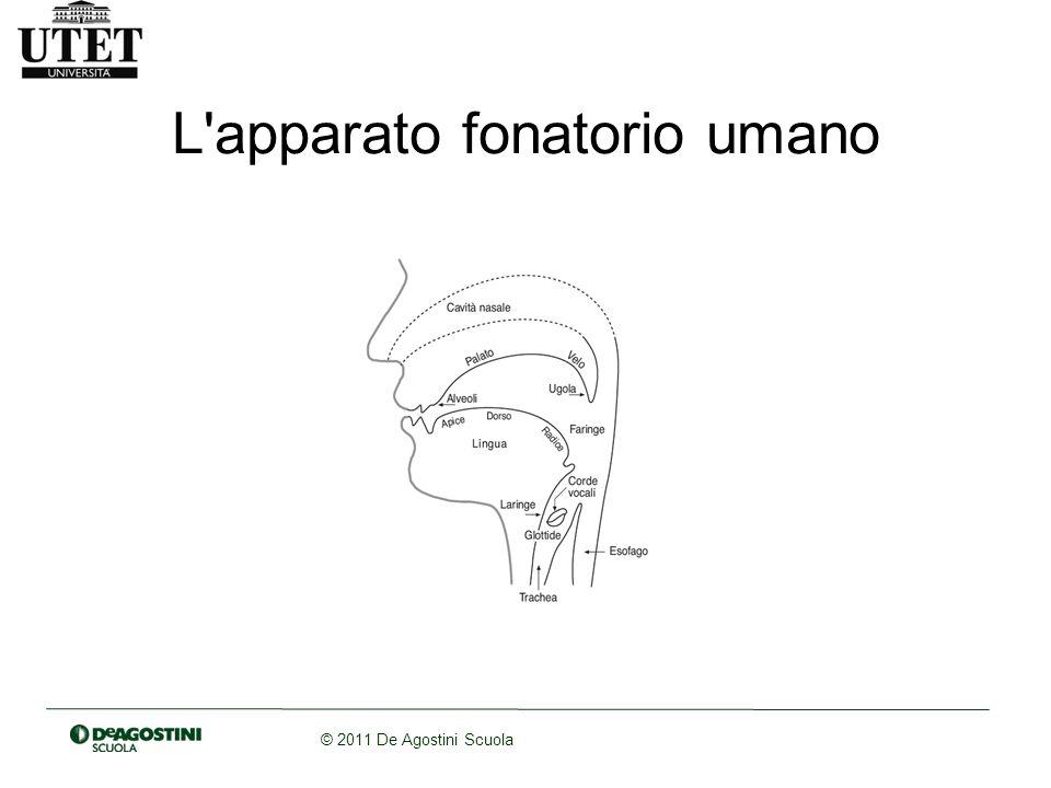 © 2011 De Agostini Scuola Parametri di identificazione dei suoni del linguaggio 1.