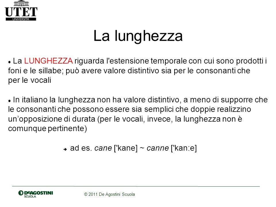 © 2011 De Agostini Scuola La lunghezza La LUNGHEZZA riguarda l'estensione temporale con cui sono prodotti i foni e le sillabe; può avere valore distin