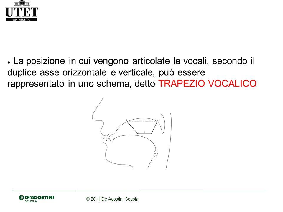 © 2011 De Agostini Scuola La posizione in cui vengono articolate le vocali, secondo il duplice asse orizzontale e verticale, può essere rappresentato