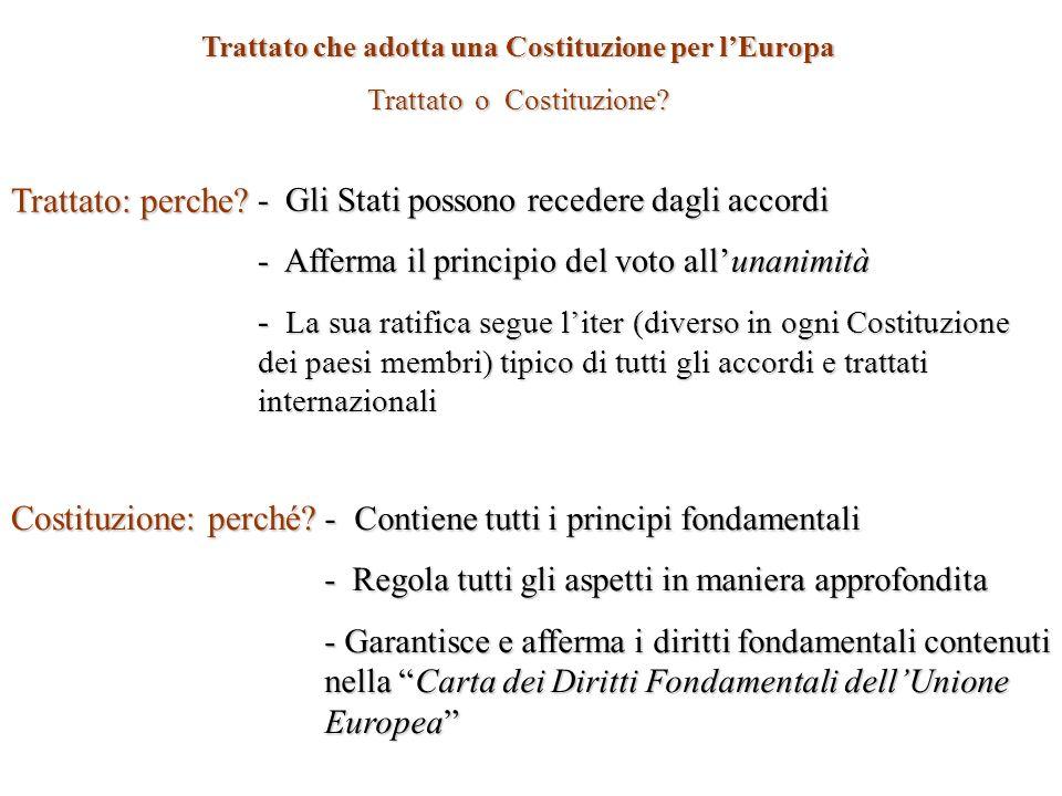 Elementi rilevanti e positivi: - Costituzione Europea: nel suo testo, per la prima volta viene spesso ribadito il concetto di Costituzione; - Personalità giuridica: LUnione Europea acquisisce personalità giuridica(art.I-7); - Carta dei diritti: La parte II del Trattato riporta interamente la Carta dei Diritti Fondamentali proclamata a Nizza il 7 Dicembre 2000; - Solidarietà: Gli Stati membri si impegnano ad agire in maniera solidale, venendo in aiuto a qualunque Stato dellUnione oggetto di un attacco terroristico o di una calamità naturale; - Cittadinanza doppia: (art.