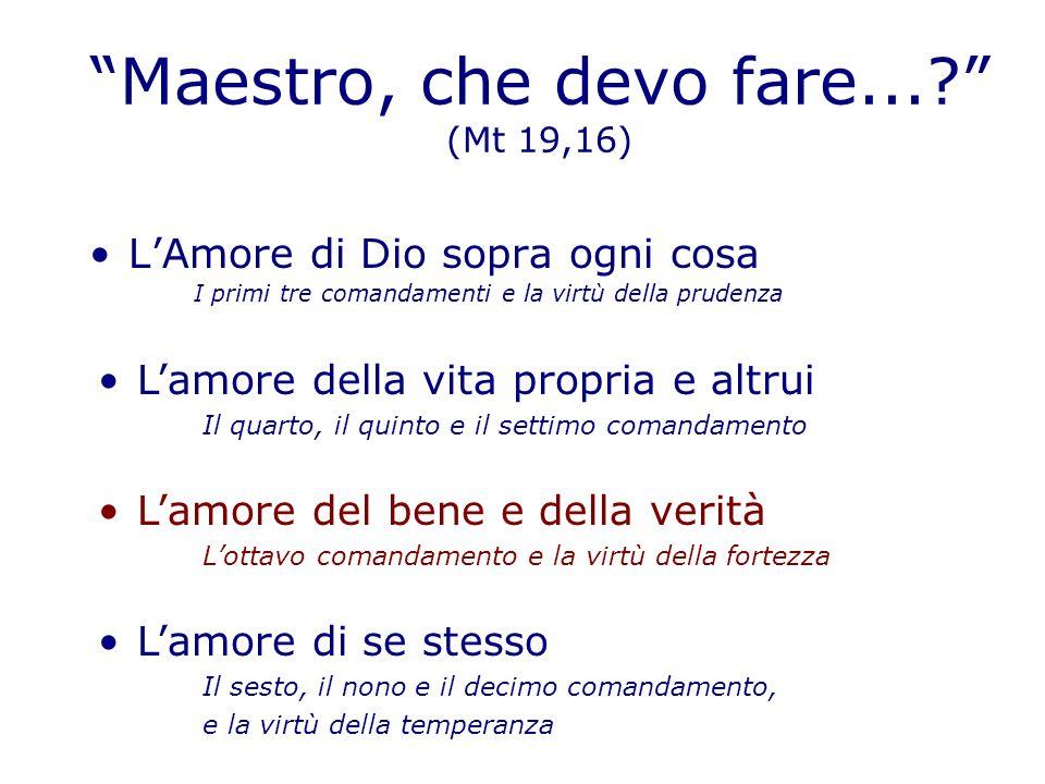 LA FORTEZZA Definizioni: - In senso lato, si può definire come la qualità necessaria ad ogni virtù perché sia effettivamente una virtù.