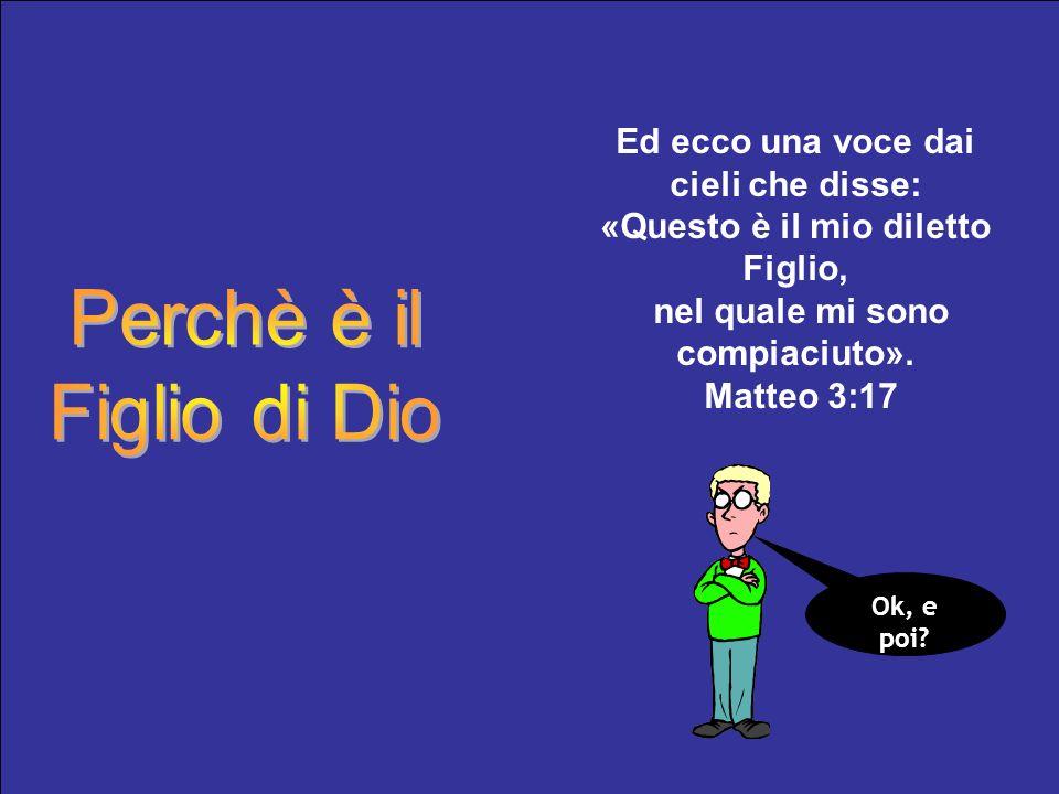 Ed ecco una voce dai cieli che disse: «Questo è il mio diletto Figlio, nel quale mi sono compiaciuto». Matteo 3:17 Ok, e poi?