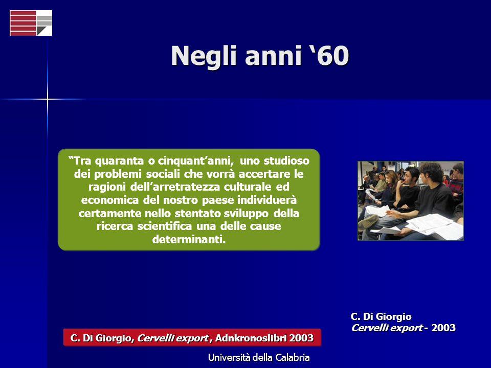 Università della Calabria Negli anni 60 Tra quaranta o cinquantanni, uno studioso dei problemi sociali che vorrà accertare le ragioni dellarretratezza