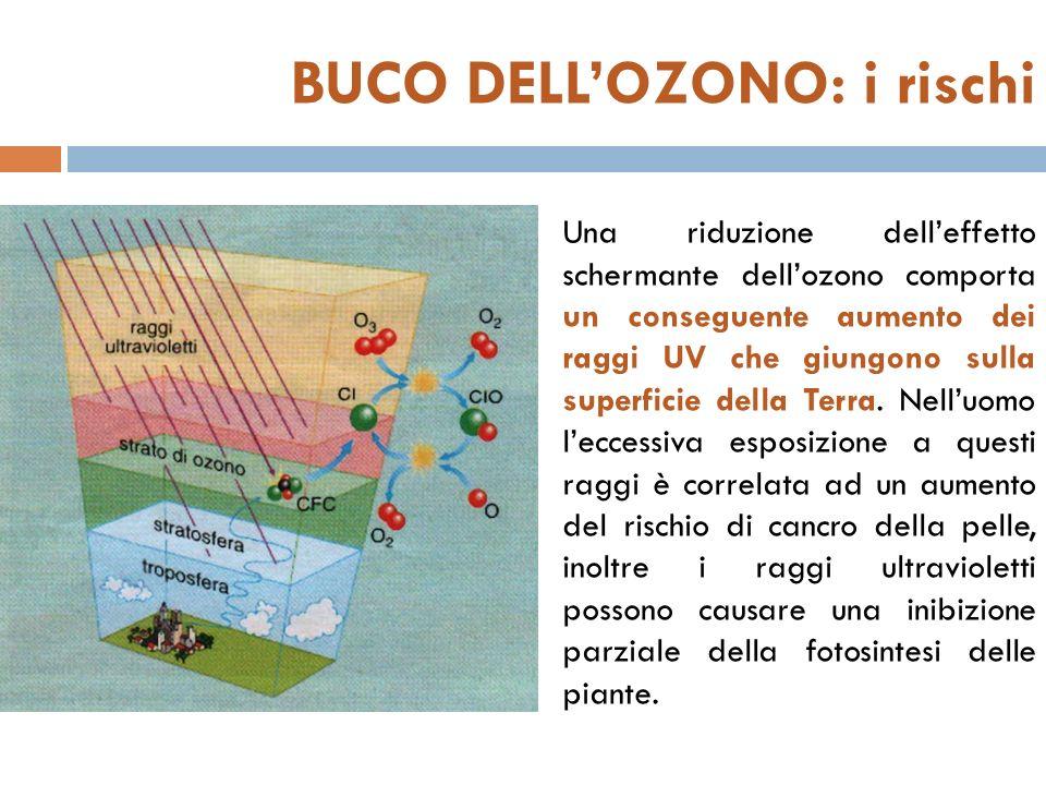 BUCO DELLOZONO: i rischi Una riduzione delleffetto schermante dellozono comporta un conseguente aumento dei raggi UV che giungono sulla superficie della Terra.