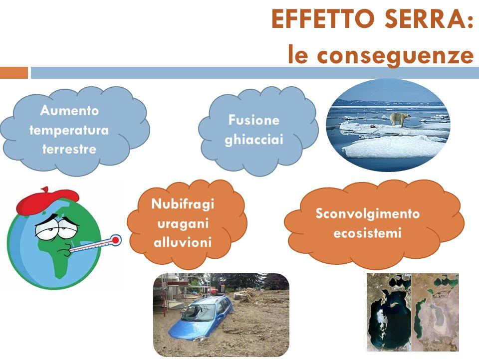 EFFETTO SERRA: le conseguenze Aumento temperatura terrestre Fusione ghiacciai Nubifragi uragani alluvioni Sconvolgimento ecosistemi