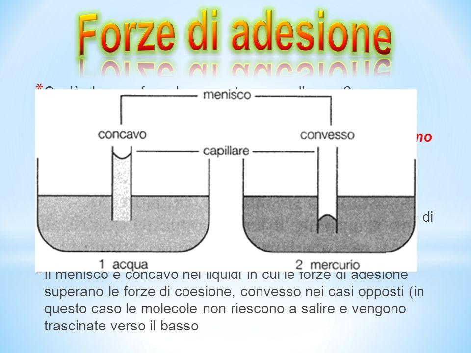 * Possiamo facilmente osservare le forze di coesione dellacqua osservando una goccia di rugiada o un insetto che cammina sullacqua * Questo si verific