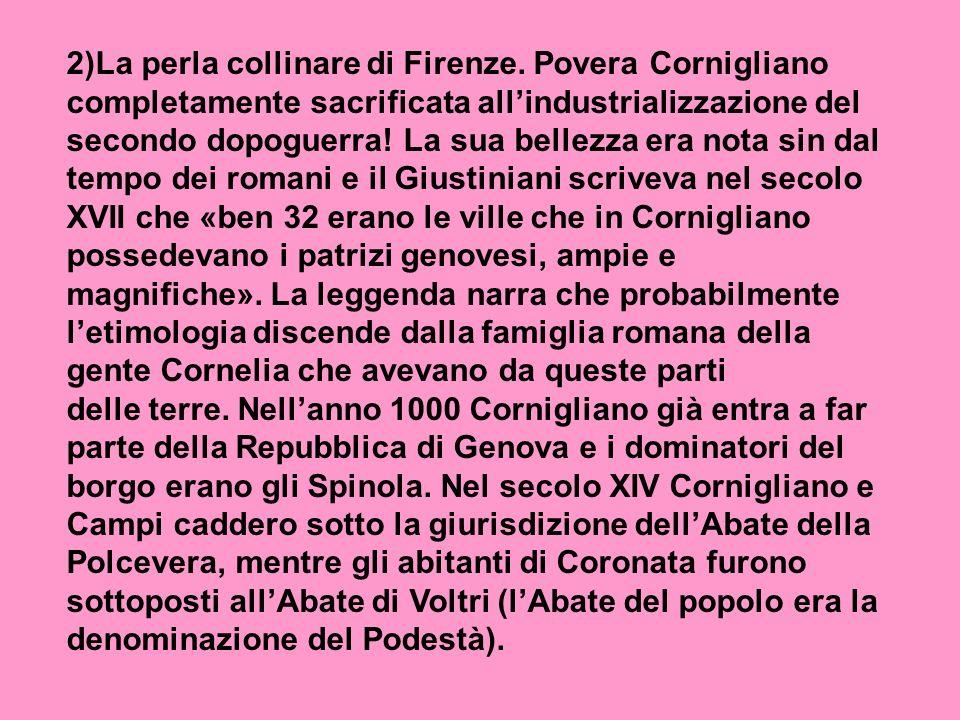2)La perla collinare di Firenze.