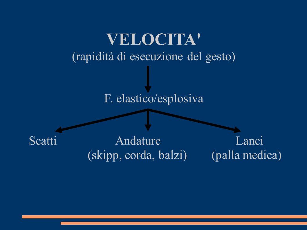 VELOCITA' (rapidità di esecuzione del gesto) F. elastico/esplosiva Scatti Andature Lanci (skipp, corda, balzi) (palla medica)