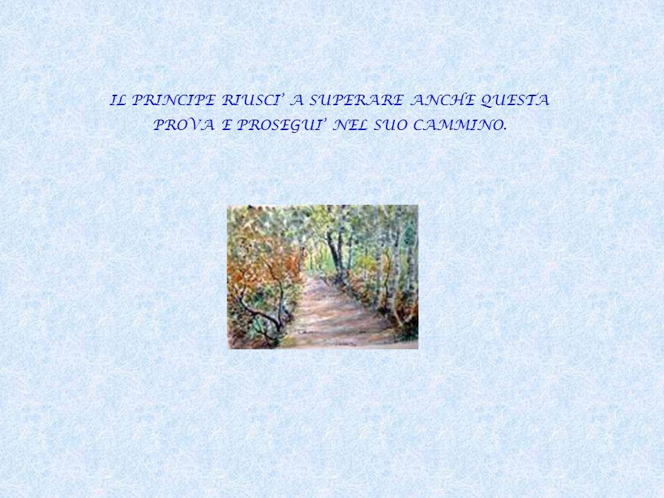 DOPO AVER CAMMINATO PER UN BEL PO DI TEMPO, IL PRINCIPE ARRIVO AL CASTELLO IN CUI ERA TENUTA PRIGIONIERA LA PRINCIPESSA.