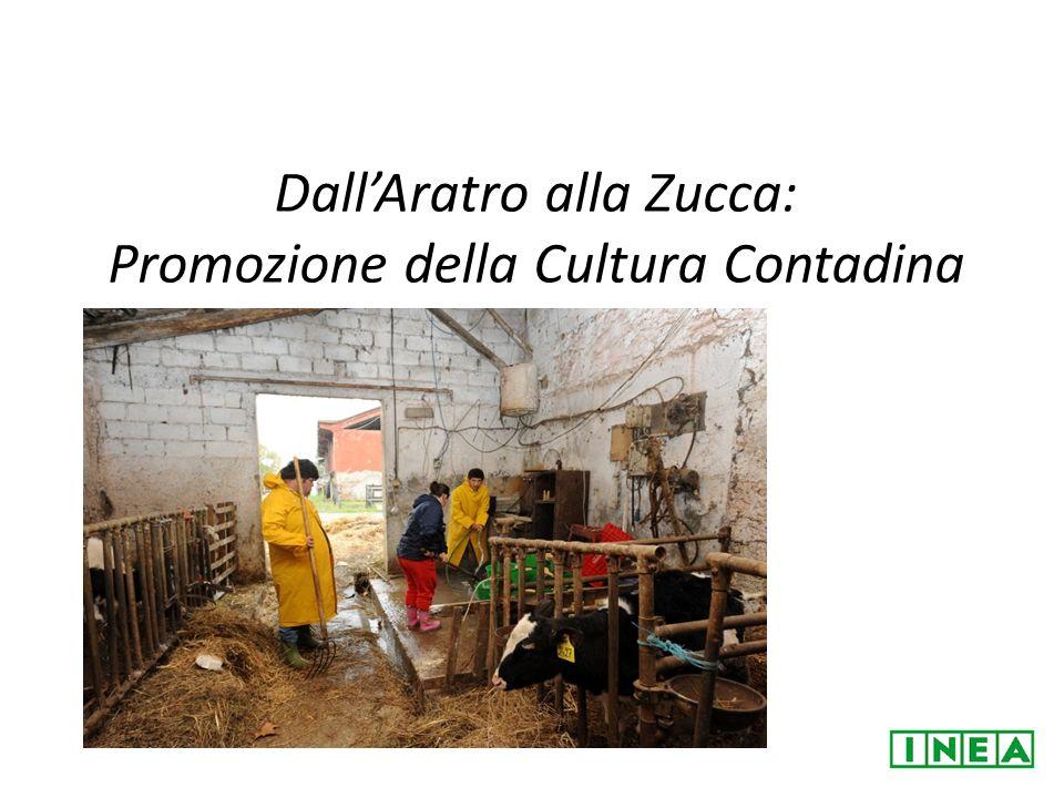 DallAratro alla Zucca: Promozione della Cultura Contadina