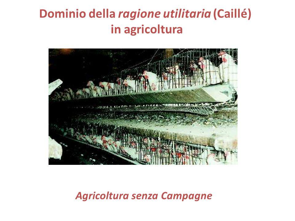 Dominio della ragione utilitaria (Caillé) in agricoltura Agricoltura senza Campagne