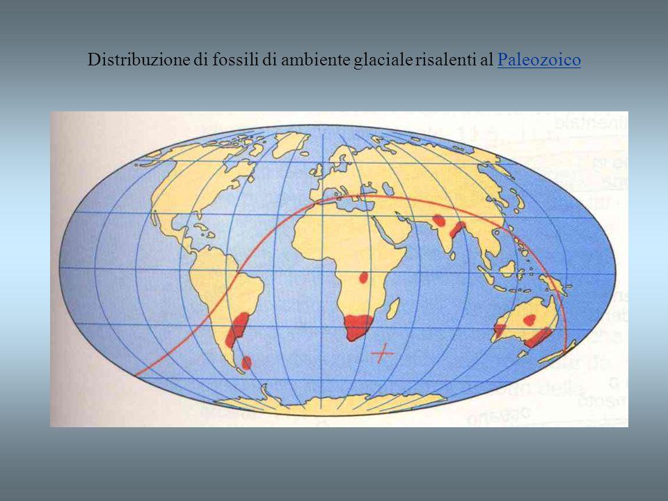 Distribuzione di fossili di ambiente glaciale risalenti al PaleozoicoPaleozoico