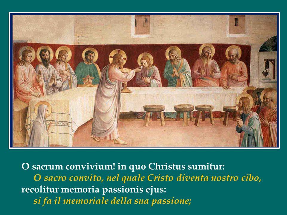 O sacrum convivium.