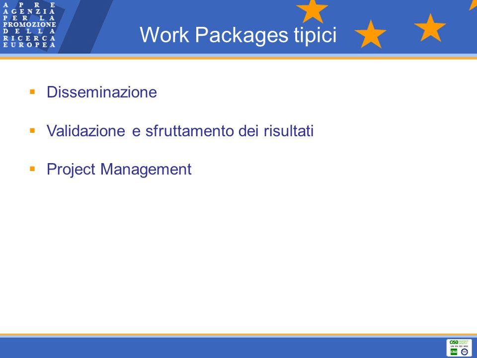 Work Packages tipici Disseminazione Validazione e sfruttamento dei risultati Project Management