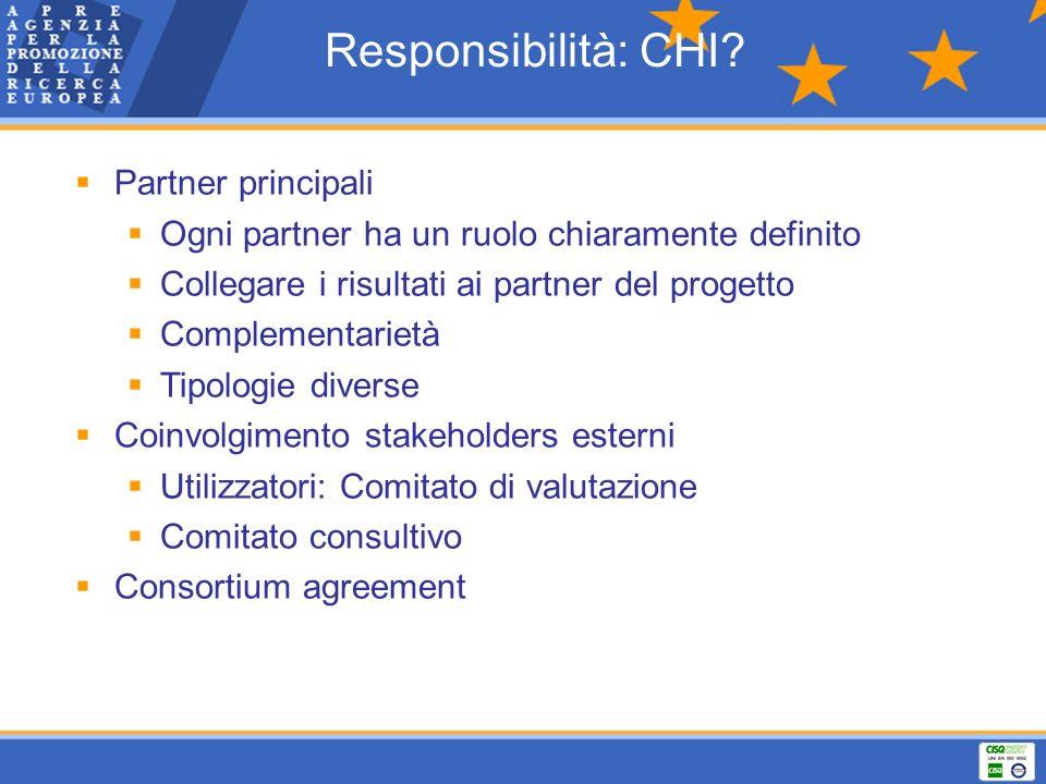 Responsibilità: CHI? Partner principali Ogni partner ha un ruolo chiaramente definito Collegare i risultati ai partner del progetto Complementarietà T