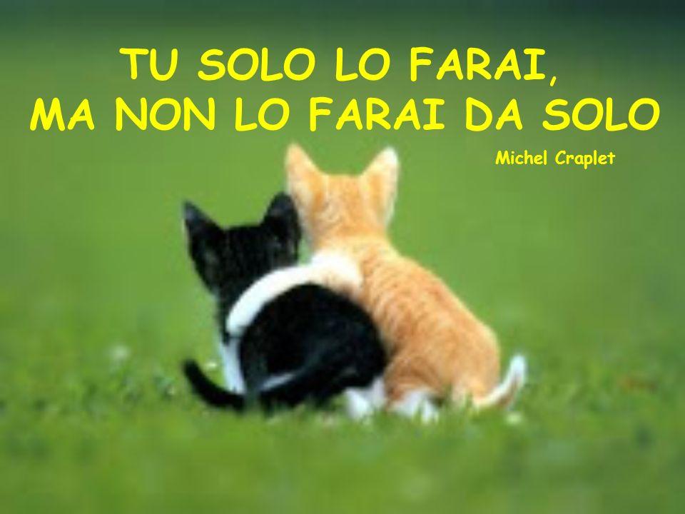 TU SOLO LO FARAI, MA NON LO FARAI DA SOLO Michel Craplet