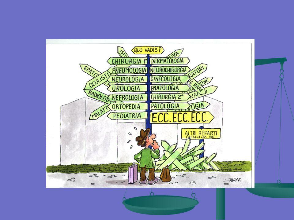 Qualità Cartella Clinica: Completezza Motivo ricovero98% Dati anamnestici60% Esame obiettivo generale68% Esame obiettivo specifico79% Esplicitazioni Dia-Ter40% Consenso trattamento dei dati64% Consenso informato a pratiche invasive92% Referti esami strumentali e di laboratorio81% Quadri sintetici13% Lettera di dimissione95% (2003 Ist.