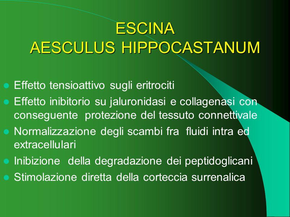 ESCINA AESCULUS HIPPOCASTANUM Effetto tensioattivo sugli eritrociti Effetto inibitorio su jaluronidasi e collagenasi con conseguente protezione del te