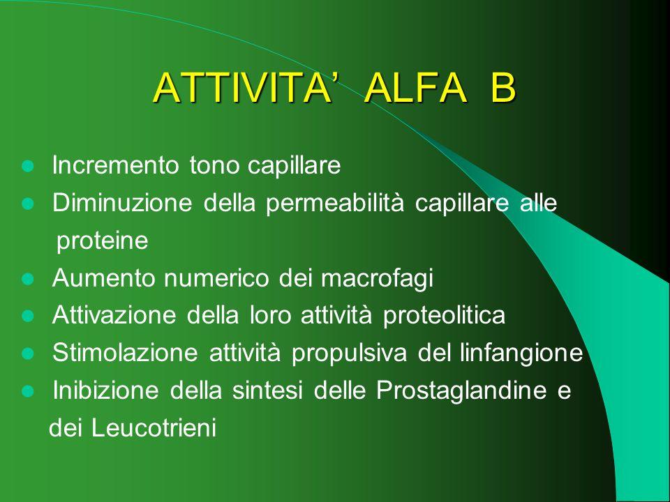 ATTIVITA ALFA B Incremento tono capillare Diminuzione della permeabilità capillare alle proteine Aumento numerico dei macrofagi Attivazione della loro