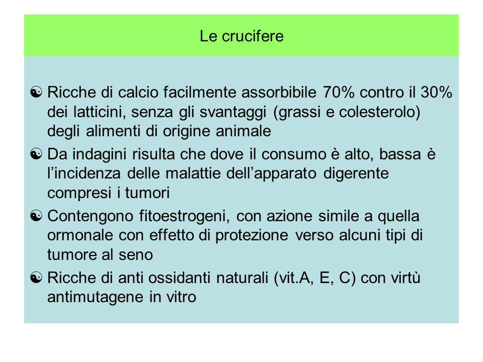 Rucola Senape Crescione Brassicacee Cavolo cappuccio Broccoli Cavolfiore Cavolini di Bruxelles Cavoli a foglia