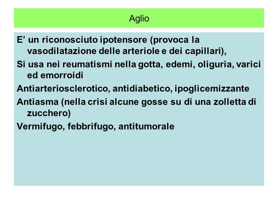 Aglio Allium sativum Liliacea Parti utilizzate: il bulbo costituito da foglie modificate ed in medicina la sua essenza Contiene due principi antibioti