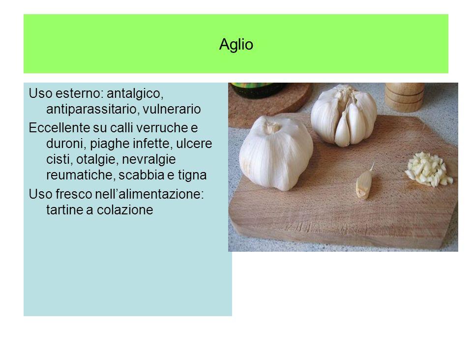 Aglio E un riconosciuto ipotensore (provoca la vasodilatazione delle arteriole e dei capillari), Si usa nei reumatismi nella gotta, edemi, oliguria, v