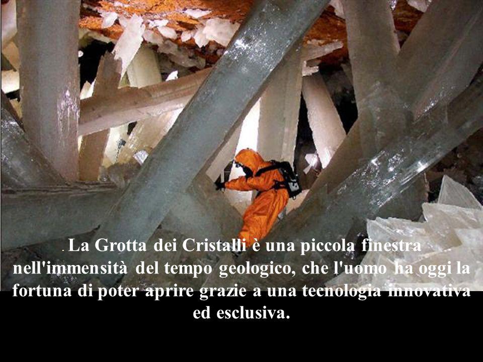 Una grotta a 50° di temperatura e 100% di umidità, infernale, dove l'uomo può sopravvivere pochi minuti.
