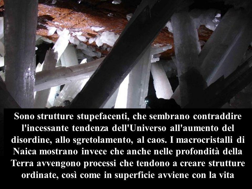 Si tratta di un vero e proprio geode: una caverna completamente ricoperta di trasparenti cristalli di selenite, cioè gesso purissimo, alcuni dei quali