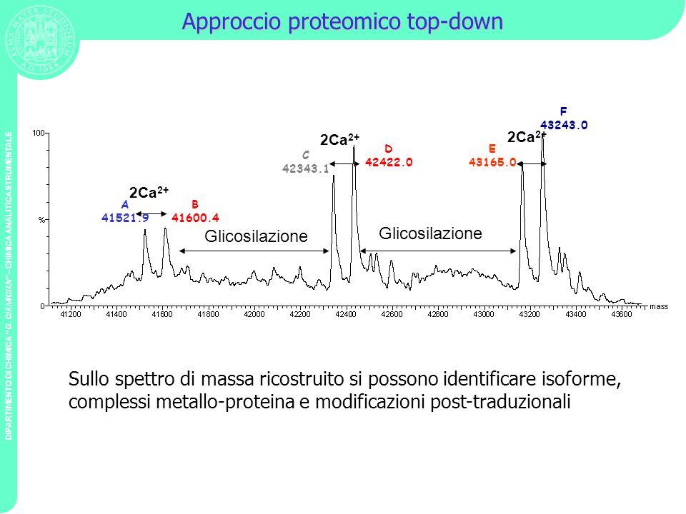 DIPARTIMENTO DI CHIMICA G. CIAMICIAN – CHIMICA ANALITICA STRUMENTALE Approccio proteomico top-down A 41521.9 B 41600.4 C 42343.1 D 42422.0 E 43165.0 F