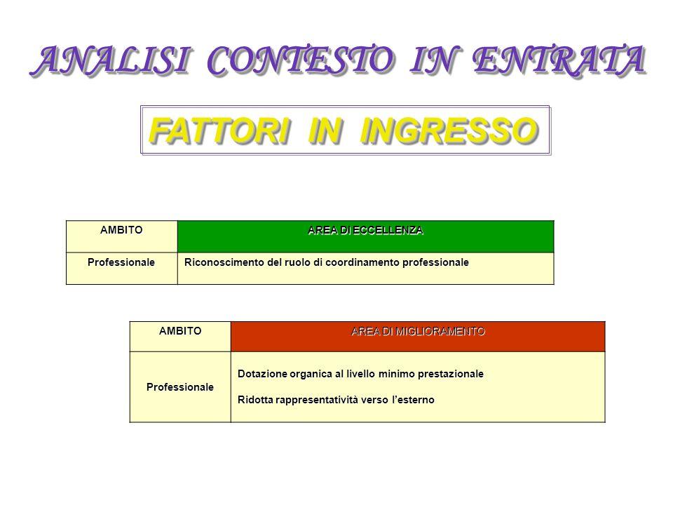 ANALISI CONTESTO IN ENTRATA FATTORI IN INGRESSO AMBITO AREA DI ECCELLENZA Professionale Riconoscimento del ruolo di coordinamento professionale AMBITO