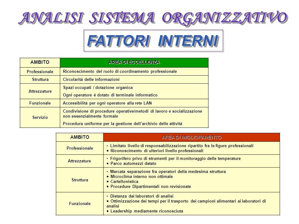 ANALISI SISTEMA ORGANIZZATIVO FATTORI INTERNI AMBITO AREA DI ECCELLENZA Professionale Riconoscimento del ruolo di coordinamento professionale Struttur