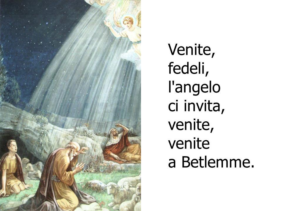 Venite, fedeli, l'angelo ci invita, venite, venite a Betlemme.