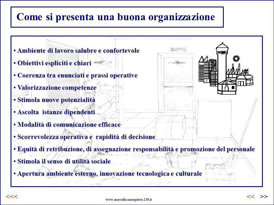 Come si presenta una buona organizzazione Ambiente di lavoro salubre e confortevole Ambiente di lavoro salubre e confortevole Obiettivi espliciti e ch